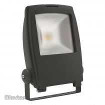 Kanlux Rindo LED MCOB-50-GM (18482)